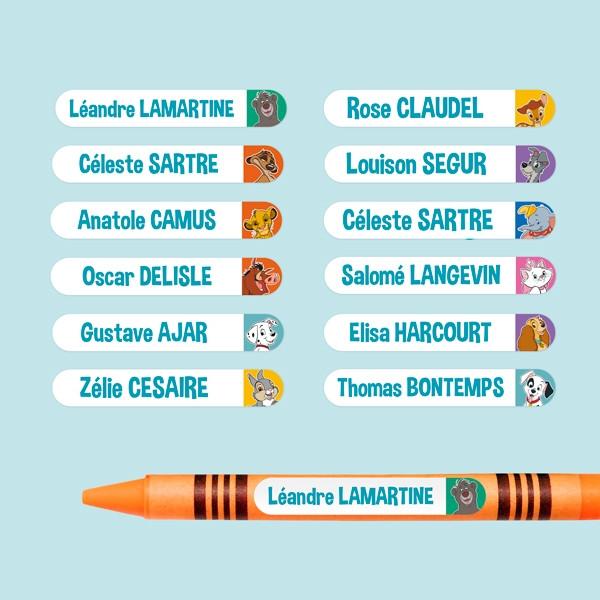 Mini Etiquettes Autocollantes Disney Animaux - multi-personnalisations