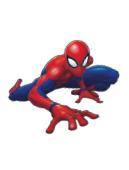 Les étiquettes Spiderman